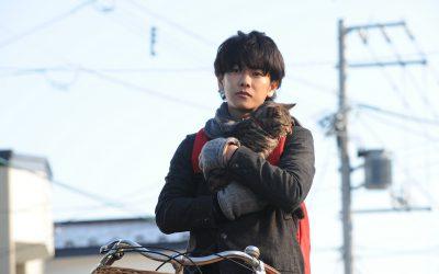The 16 Best Japanese Romance Movies | Cinema Escapist